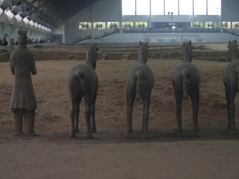 there are terracota horses